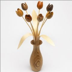 Natural sets with vase